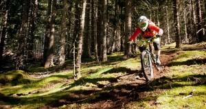Bikepark 7 Laux